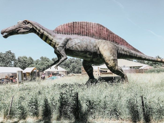 A Day At Field Station Dinosaurs | Fit Mommy In Heels